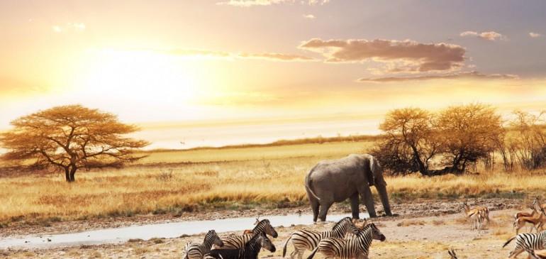 Namibia – Botswana – Zimbabwe  (25 Ağustos – 08 Eylül 2017)