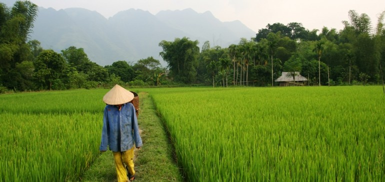 Vietnam  Kamboçya  Laos (20 Ocak – 01 Şubat 2018)