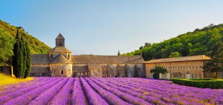 Lavanta Zamanı Güney Fransa / (06-10 Temmuz 2018 )